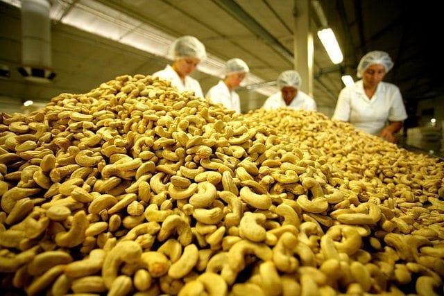 Secretário de Agricultura rebate críticas sobre setor agropecuário do RN