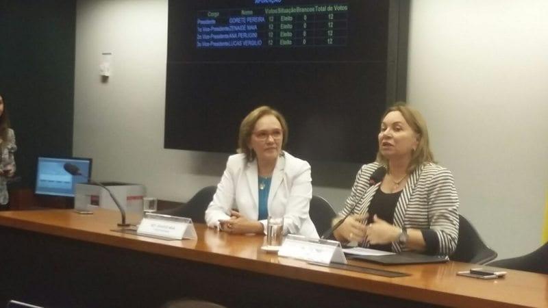 Deputada Zenaide Maia é eleita vice-presidente da Comissão de Defesa dos Direitos da Mulher
