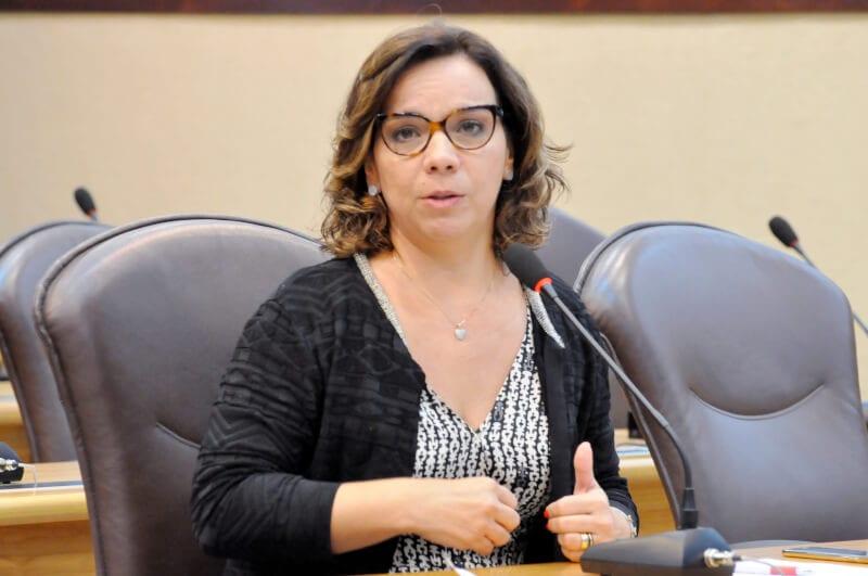 Deputada Larissa requer programa para auxiliar  produtores da agricultura familiar