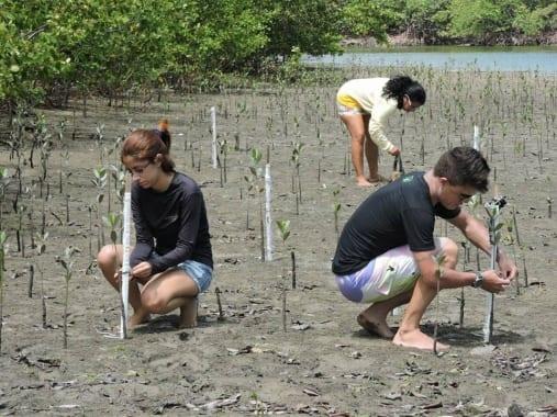 Material apreendido pela Semurb é doado para uso em educação ambiental