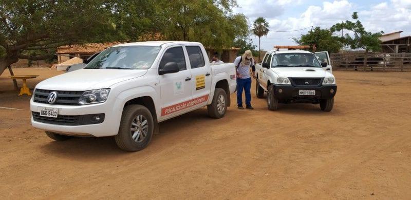 IDIARN realiza ação de combate à peste suína no estado