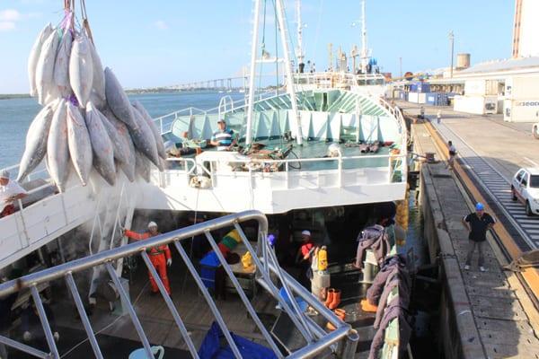 Indústria pesqueira do RN é beneficiada com 17% de redução no valor do diesel