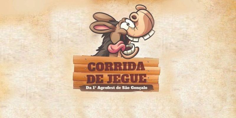 Corrida de jegue: São Gonçalo resgata um dos mais tradicionais eventos da zona rural